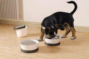 Curver Pet Food Travelkit Grey