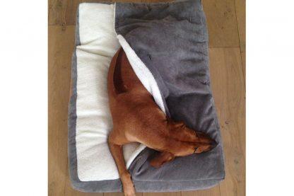 EBI D&D Snuggle Bed Cody hondenslaapzak - Curdoroy