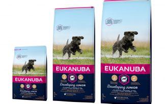 Eukanuba Developing Junior Large