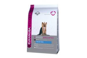 Eukanuba Ras Yorkshire Terrier