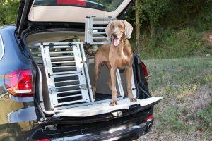 Ferplast Atlas Car Aluminium hondenvervoersbox