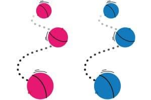 De Flamingo LED bal is een super leuk speeltje voor uw hond of kat.