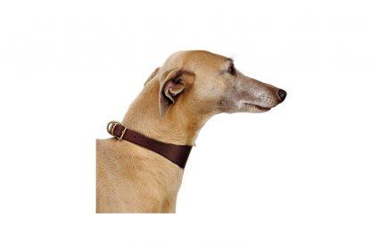 Ferplast VIP CW lederen hondenhalsband
