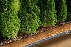 Gardena duizenddruppelslang 15 meter
