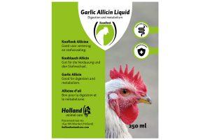 Garlic Allicin Liquid 250ml