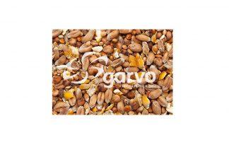 Garvo eendengraan