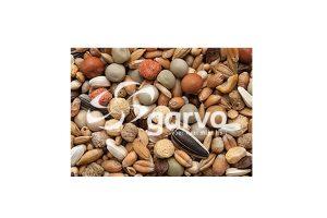 Garvo sierduif kroppervoer zonder mais en milo