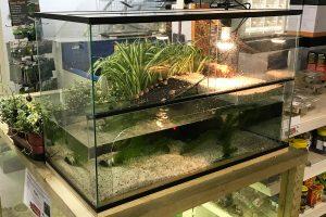 Waterschildpadden aquarium Deluxe