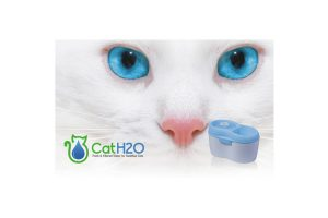 Cat H2O waterautomaat