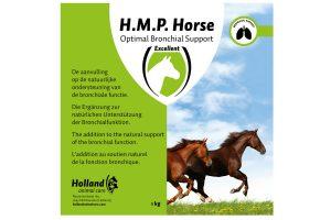 Excellent H.M.P. Horse