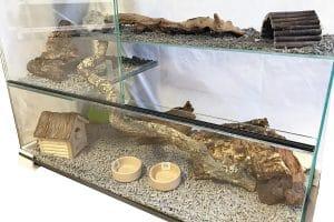 Knaagdierterrarium glazen knaagdierkooi