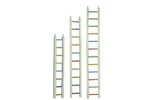 Happy Pet ladder hout gekleurd voor papegaaien. Verkrjigbaar in drie maten, 61 cm,92 cm,122 cm.