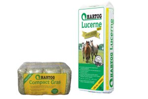 Hartog paardenvoeding