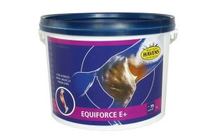 Havens EquiForce E+