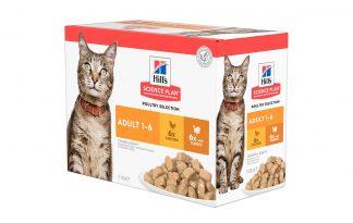 Hill's Science Plan Adult kattenvoer nat kip & kalkoen