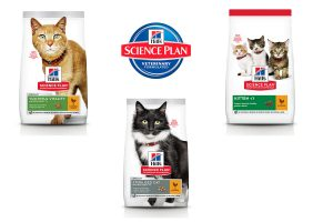 Hill's Science Plan kattenbrok