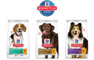 Hill's Science Plan Special Care brokvoeding hond