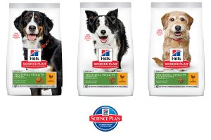 Hill's Science Plan Youthful Vitality brokvoeding hond