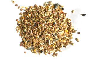 Gemengd graan / Scharrelgraan