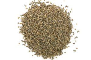 Beyers Japanse millet