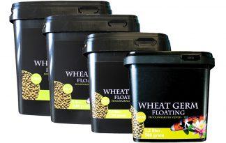 Huismerk Premium Koi voer Wheat Germ Floating (3 mm)