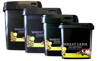Huismerk Premium Koi voer Wheat Germ Floating (6 mm)