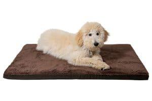 Het Jack & Vanilla Waterproof Orthopedisch Matras is speciaal ontwikkeld voor oudere honden of huisdieren met pijnlijke gewrichten.