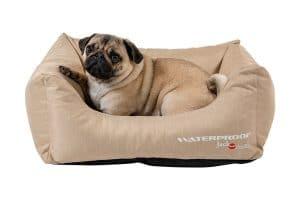 Jack & Vanilla Waterproof Sofa