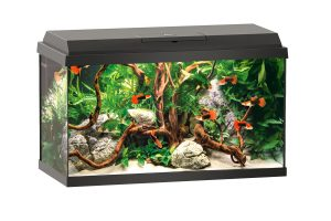 Juwel Primo Led aquarium