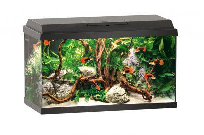 Juwel Primo Led aquarium