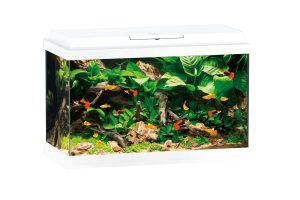 Juwel Primo 70 Led aquarium wit