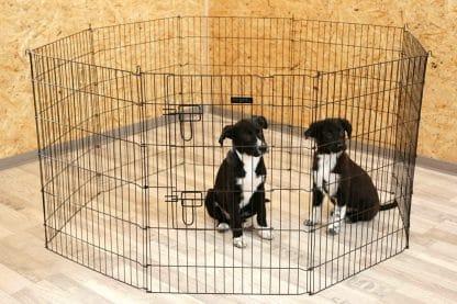 Het Kerbl Puppyverblijf is ideaal om binnen of buiten te gebruiken. Op deze manier kunnen puppy's of of kleine dieren veilig vrij bewegen.