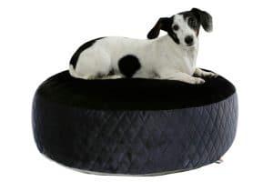 De Kerbl hondenpoef heeft een luxe uitstraling en ligt erg comfortabel voor uw hond.
