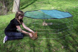 Kerbl outdoor knaagdierren 8-delig