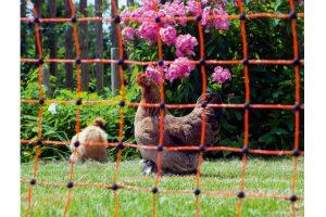 Elektrificeerbaar afrasteringsnet voor pluimvee