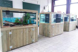 Maatwerk aquarium Nature schoolverblijven