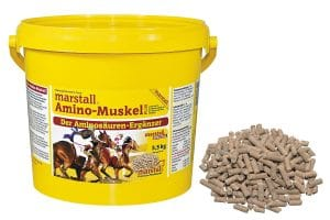 Marstall voedingssupplement Amino-Muskel Plus