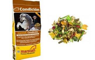 Marstall Individual Condición