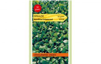 Oranjeband Zaden spinazie breedblad scherpzaad