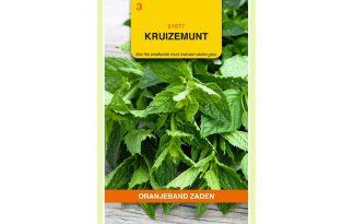 Oranjeband Zaden kruizemunt (Mentha spicata var. crispa)
