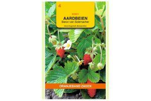 Oranjeband Zaden aardbeien Baron von Solemacher