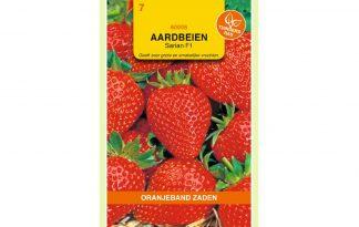 Oranjeband Zaden aardbeien Sarian F1