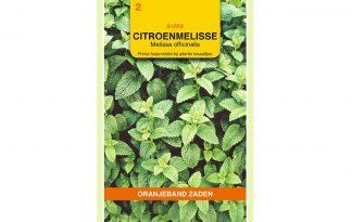 Oranjeband Zaden citroenmelisse (Melissa officinalis)