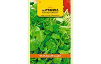 Oranjeband Zaden grootbladige waterkers (Nasturtium officinale)