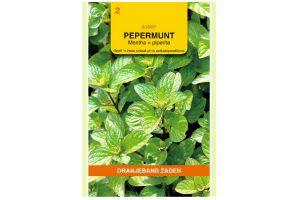 Oranjeband Zaden pepermunt (Mentha piperita)