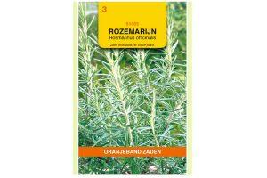 Rozemarijn (Rosmarinus officinalis)