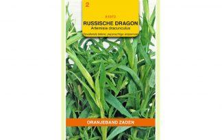 Oranjeband Zaden Russische dragon (Artemisia dracunculus var. inodora)