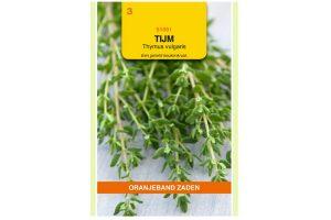 Oranjeband Zaden tijm, echte tijm (Thymus vulgaris)