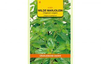 Oranjeband Zaden wilde marjolein