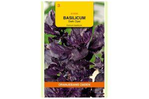 Oranjeband Zaden basilicum Dark Opal (Ocimum basilicum)